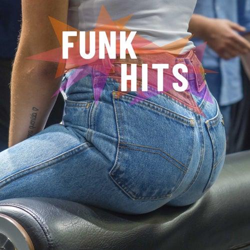 Funk Hits von Various Artists