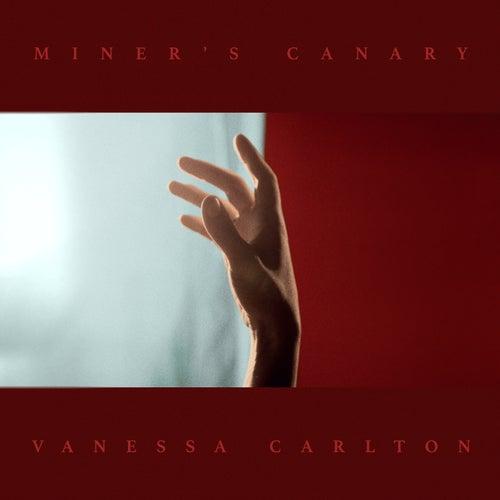 Miner's Canary by Vanessa Carlton