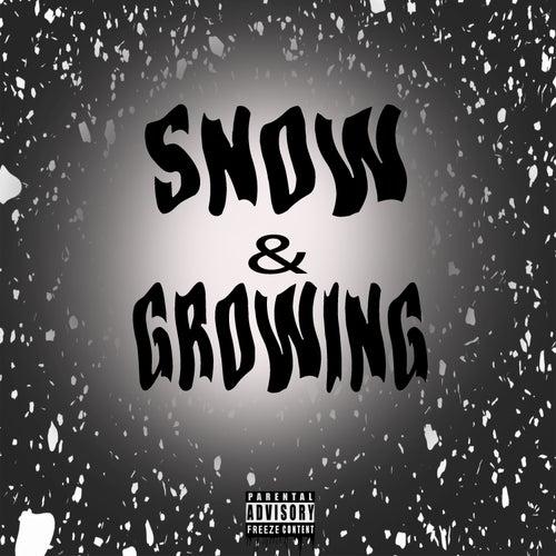 Snow & Growing di Nnewmann