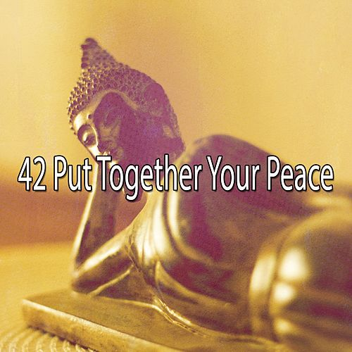 42 Put Together Your Peace de Zen Meditate