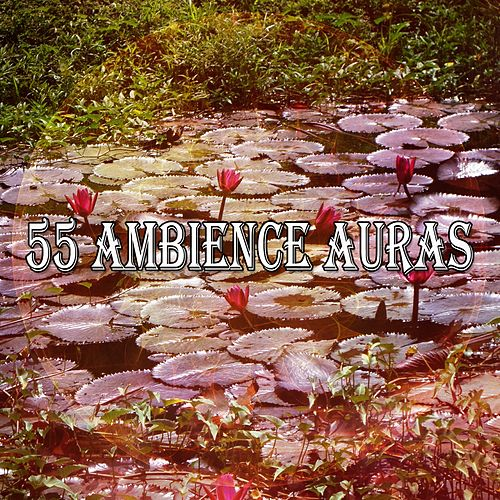 55 Ambience Auras by Lullabies for Deep Meditation