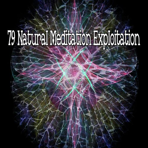 79 Natural Meditation Exploitation de Music For Meditation