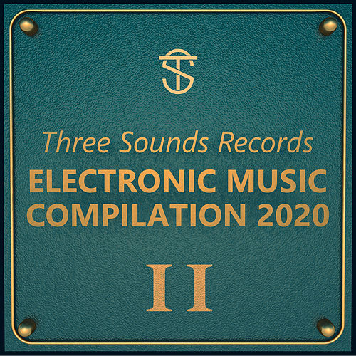 Tsr Electronic Music Compilation 2020 II von Various Artists