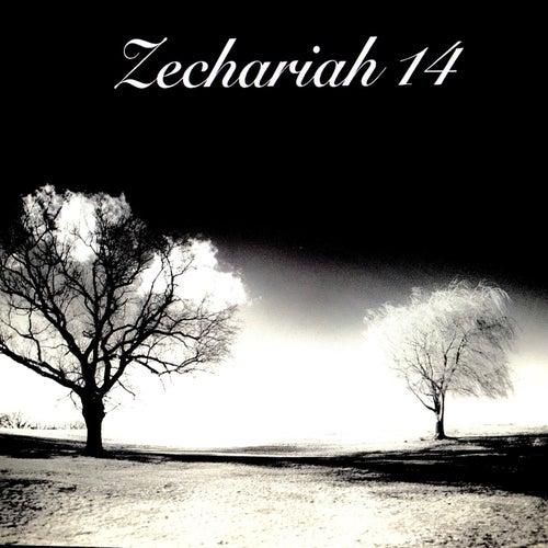 Zechariah 14 von Rashod Southern
