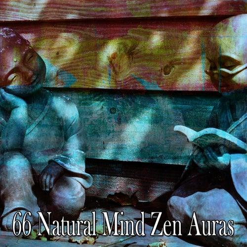 66 Natural Mind Zen Auras von Massage Therapy Music