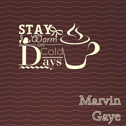 Stay Warm On Cold Days de Marvin Gaye