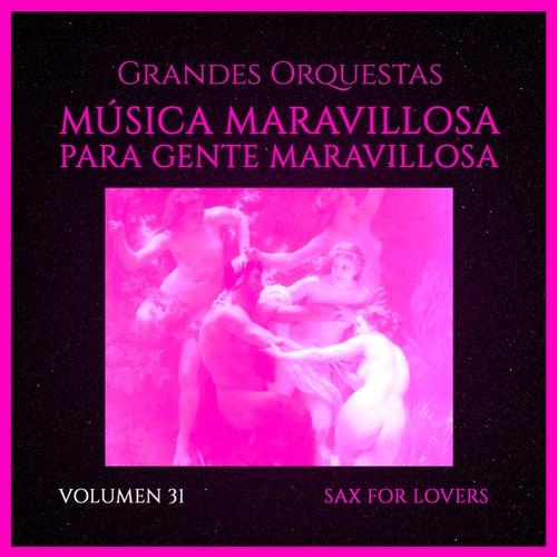 Grandes Orquestas: Música Maravillosa para Gente Maravillosa (Vol. 31 Sax For Love) von Orquesta Lírica de Barcelona