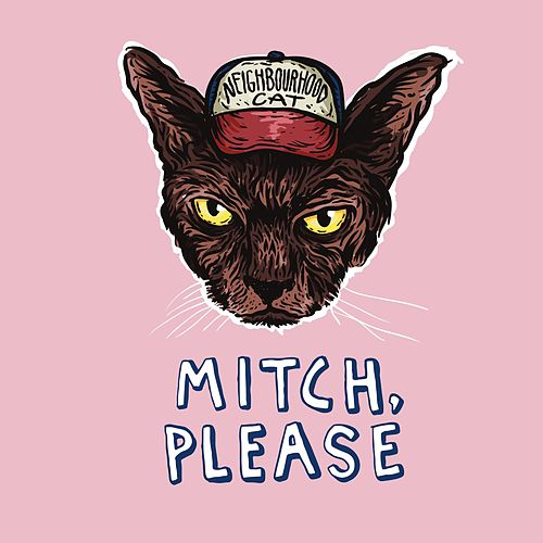 Neighbourhood Cat by Mitch Please