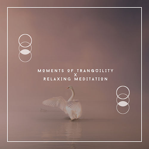 Moments Of Tranquility x Relaxing Meditation von Relaxing Chill Out Music