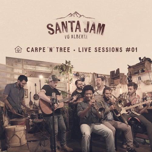 Carpe'n'tree, Live Sessions #01 by Santa Jam Vó Alberta