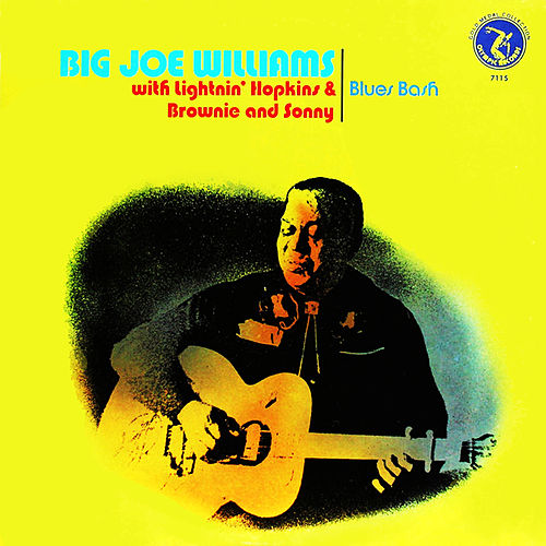 Blues Bash de Big Joe Williams
