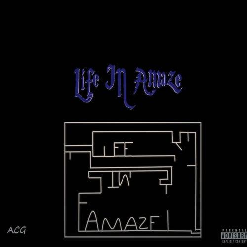 Life In Amaze von Acg