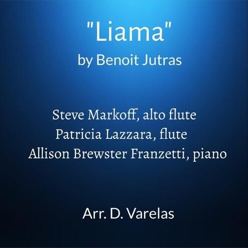 Liama de Patricia Lazzara Steve Markoff