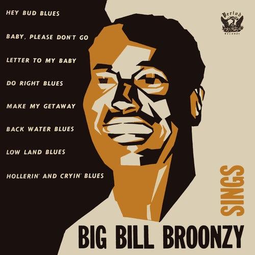 Big Bill Broonzy Sings by Big Bill Broonzy