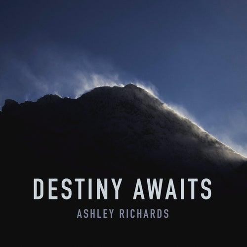 Destiny Awaits by Ashley Richards