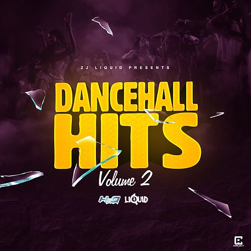 Dancehall Hits, Vol. 2 by Zj Liquid