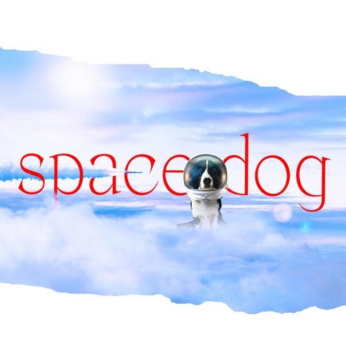 Space Dog di Birthh