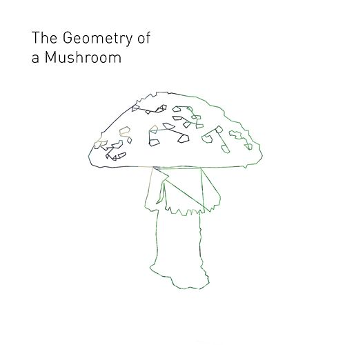 The Geometry of a Mushroom by Omri Cohen