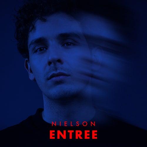 Entree van Nielson