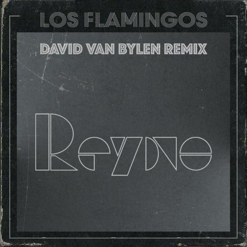 Reyno (David Van Bylen Remix) by The Flamingos