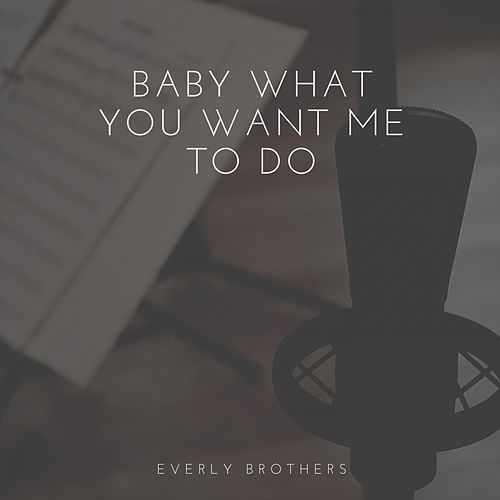 Baby What You Want Me to Do by The Everly Brothers