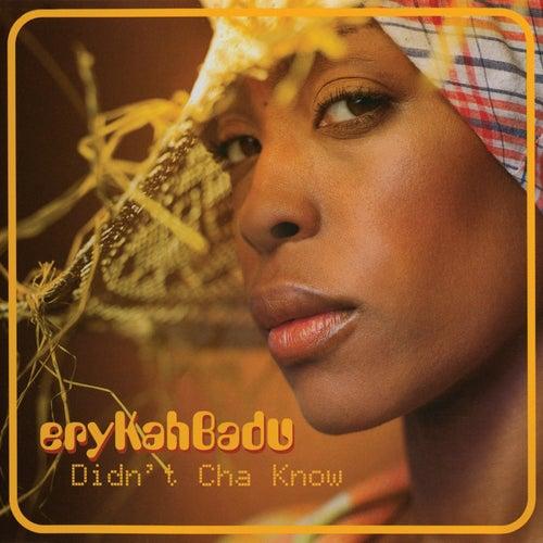 Didn't Cha Know by Erykah Badu