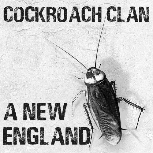 A New England de Cockroach Clan