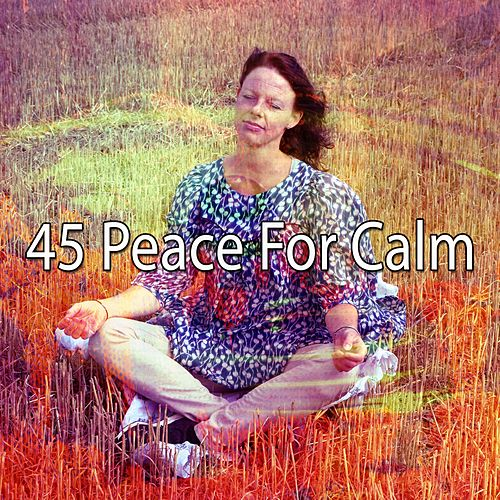 45 Peace for Calm by Zen Music Garden