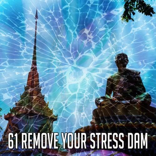 61 Remove Your Stress Dam de Massage Therapy Music