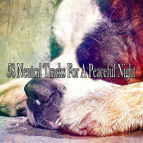 58 Neutral Tracks for a Peaceful Night de Lullaby Land
