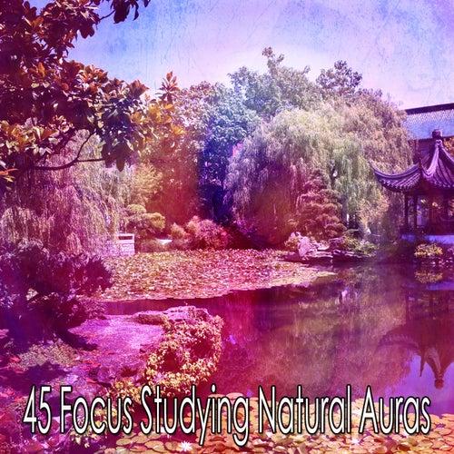 45 Focus Studying Natural Auras de Yoga