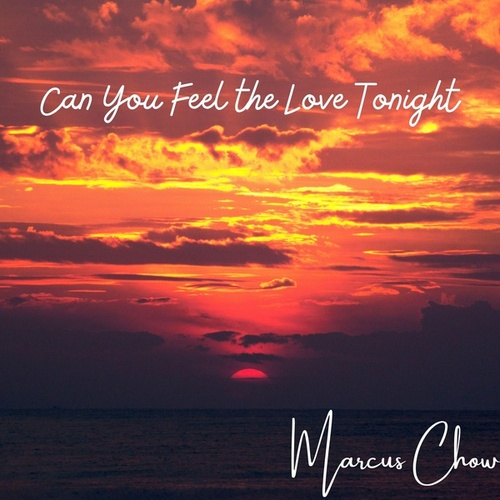 Can You Feel the Love Tonight von Marcus Chow
