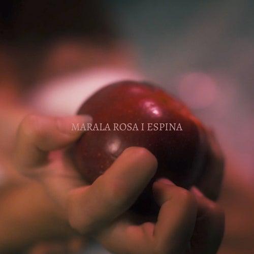 Rosa i Espina de Marala