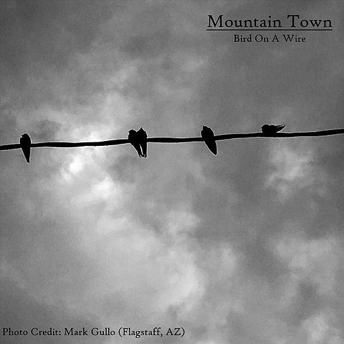 Bird on a Wire by Mountain Town