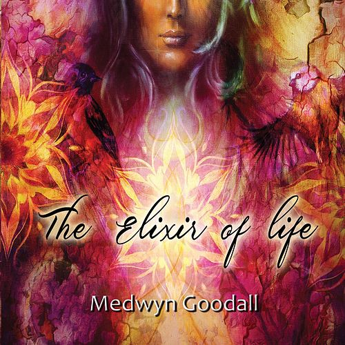 The Elixir of Life by Medwyn Goodall