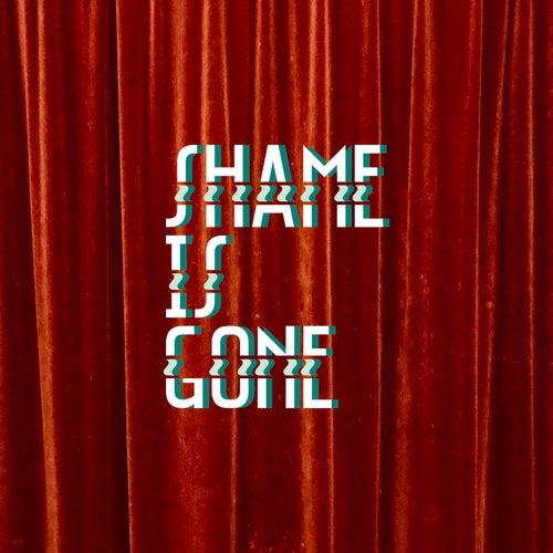 Shame Is Gone van The Max Meser Group