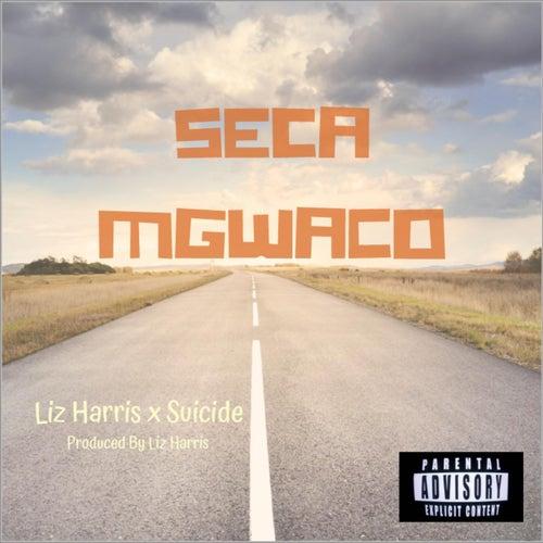 Seca Mgwaco (feat. Liz Harris) de Suicide