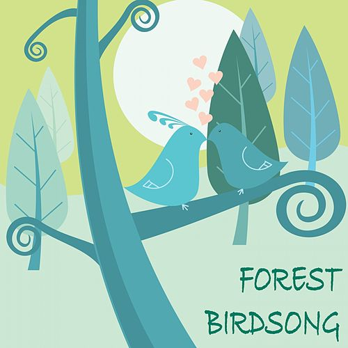 Forest Birdsong by Nature Sounds (1)