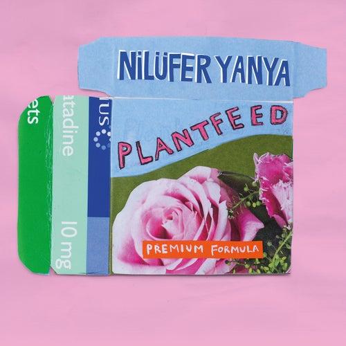 Plant Feed EP de Nilüfer Yanya
