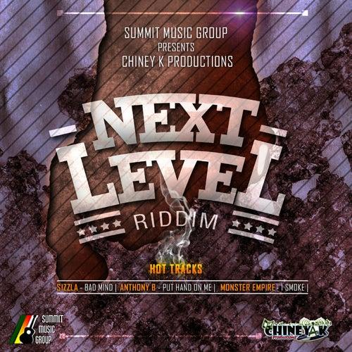 Next Level Riddim by Various Artists
