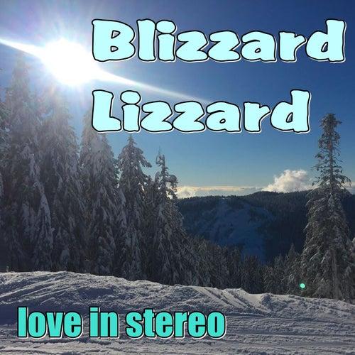 Blizzard Lizzard de Love In Stereo