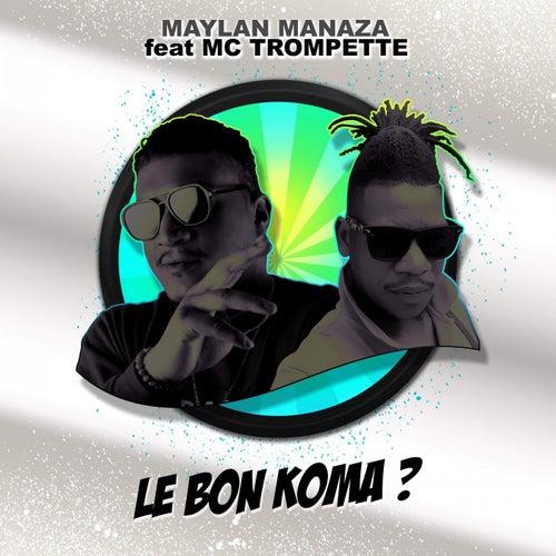 Le bon koma? by Maylan Manaza
