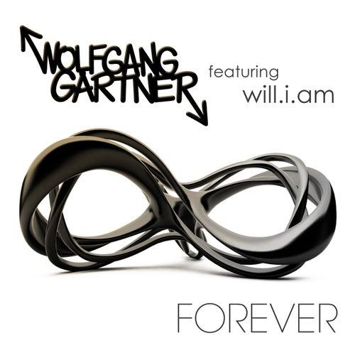 Forever (Instrumental Mix) von Wolfgang Gartner