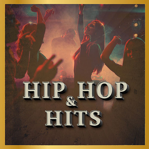 Hip Hop & Hits by Various Artists