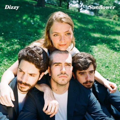 Sunflower by Dizzy
