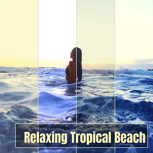 Relaxing Tropical Beach: Sea Waves, Wind, Seagulls, Tropical Birds, Wind, New Age Music de Ocean Sounds Collection (1)