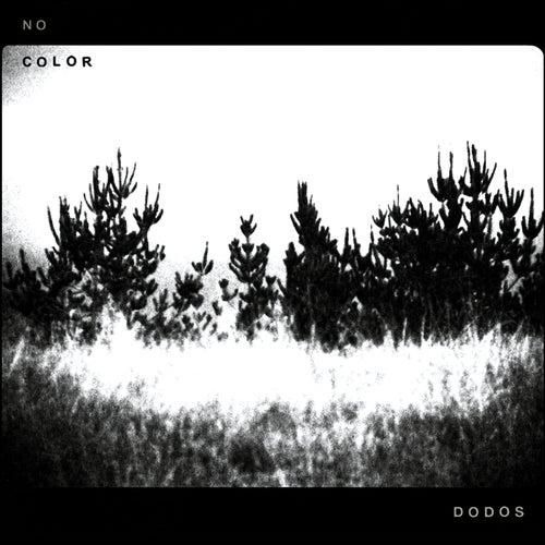 No Color by The Dodos