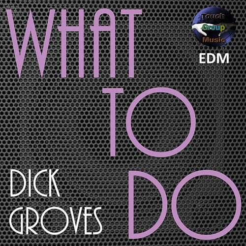 What to Do (Dancefloor Mix) by Dick Groves