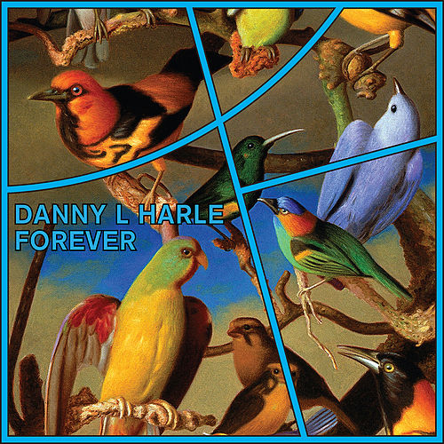 Forever by Danny L Harle