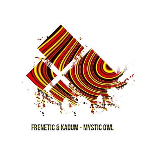 Mystic Owl by Frenetic